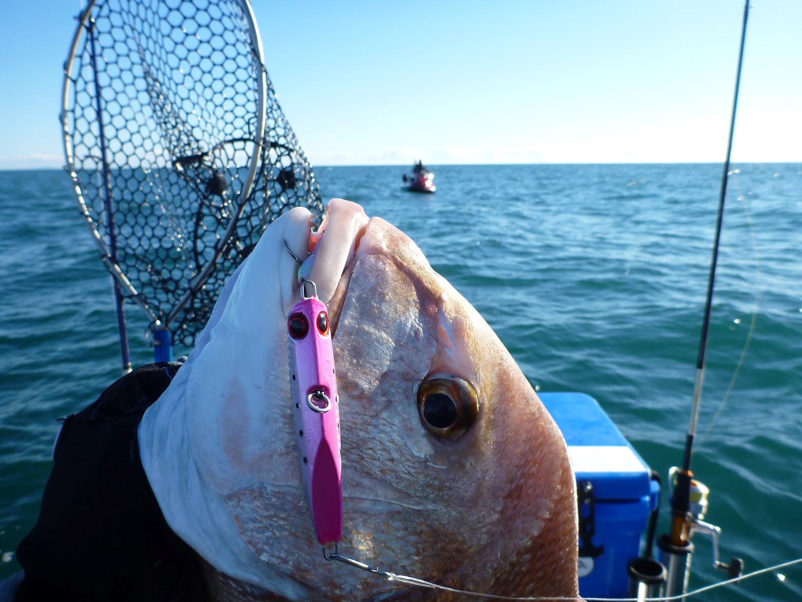 Hook up plenty of fish