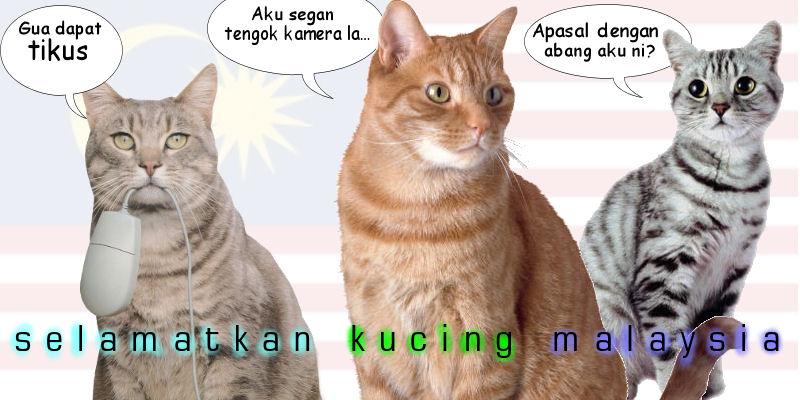 Selamatkan Kucing Malaysia