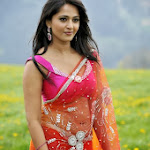 Anushka hot saree stills