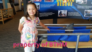 miss grace and dolphin rescue exhibit