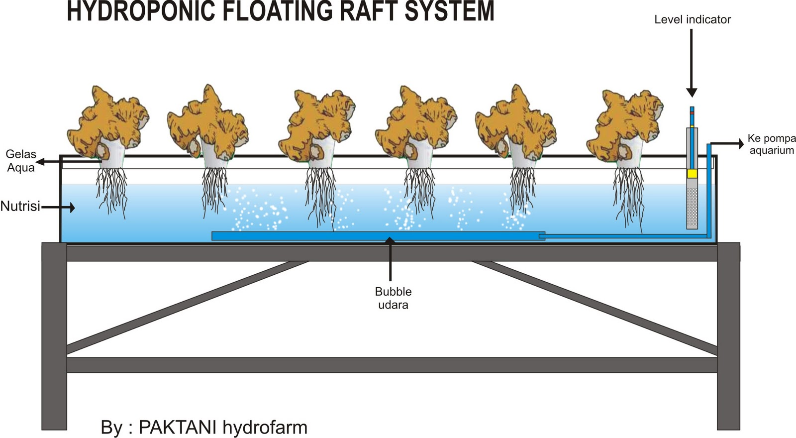 Filter for aquaponics filter free engine image for user for Hydroponic raft system design