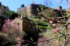 ♥ Brousse-le-Château