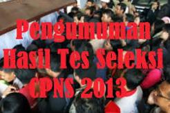 Penetapan NIP CPNS Tahun 2013