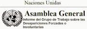 Informe del Grupo de Trabajo sobre Desapariciones Forzosas