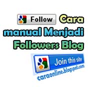 manual blog followers