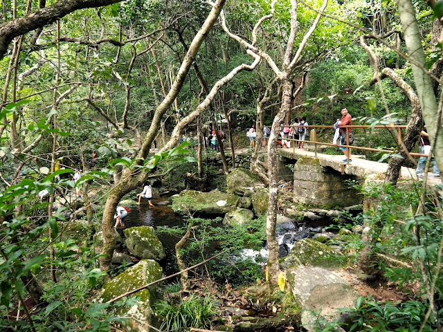 Bridge crossing the stream, leading to Bride's Pool, Plover Cove Country Park, New Territories, Hong Kong