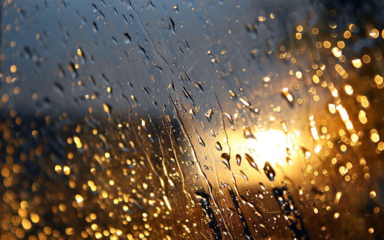 Rain On The Window Wallpaper
