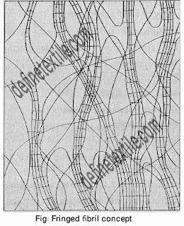 fringed-fibril-concept