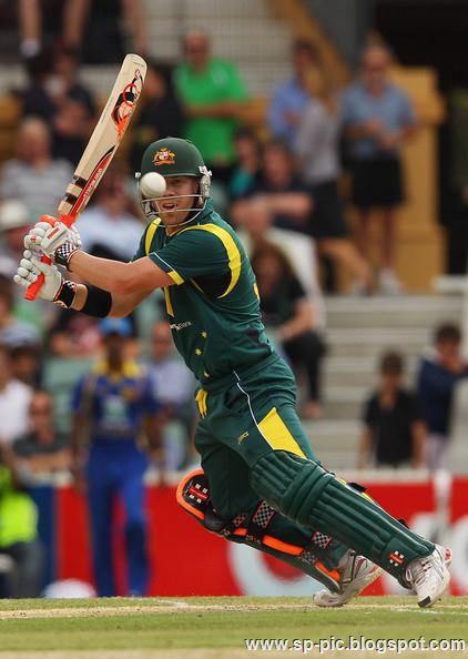 Australian Cricketer David Warner - 38.0KB