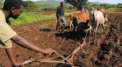खेती की तैयारी