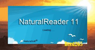 Naturalreader 11 Professional