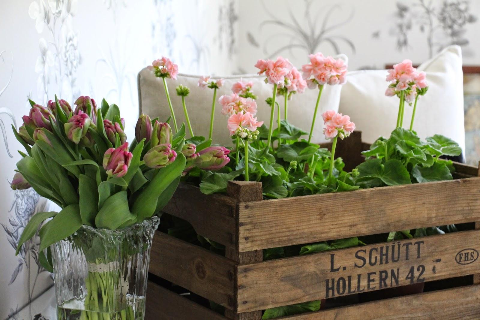 trälådor för blommor