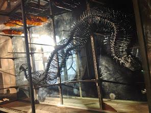 Musée d'Aurillac, vue d'expo
