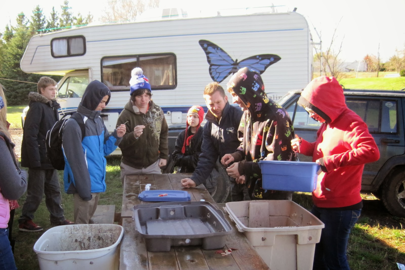 Students help propagate blueberries.