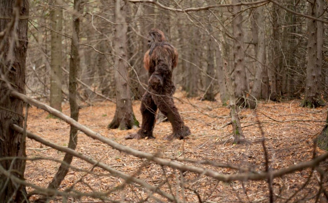 alaska bigfoot