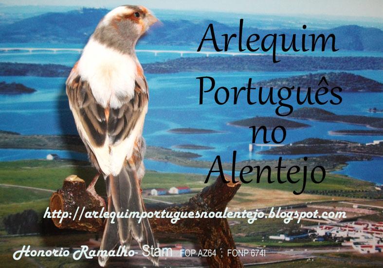 Arlequim Português no Alentejo