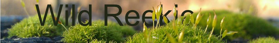 Wild Reekie