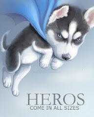 Hero's Story & Surgery Updates