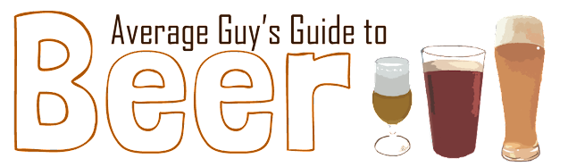 Average Guy's Guide to Beer