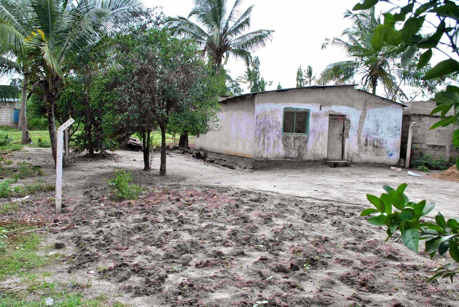 excellent renovation project kwa mtu anaetaka nyumba kwa gharama ndogo