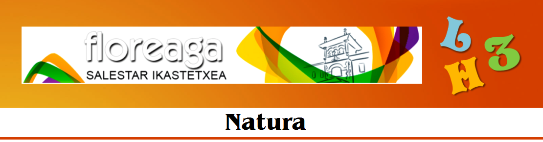 lh3bloga-natura