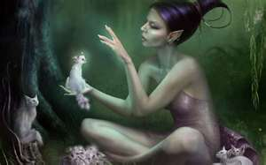 Enchanted Dreamings of a Fey )O(