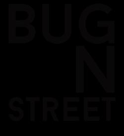 BUG ON STREET