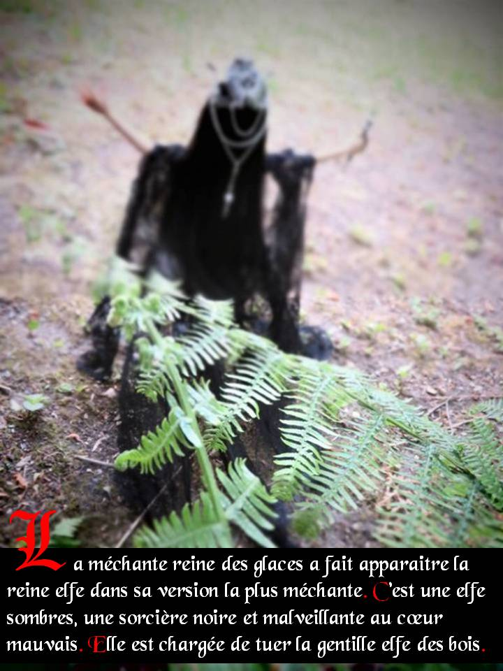 Contes elfik: Yullion&Dragona ep9 p15/abeille charpentiere - Page 6 Diapositive5