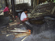 Traditional Coconut Sugar Producer