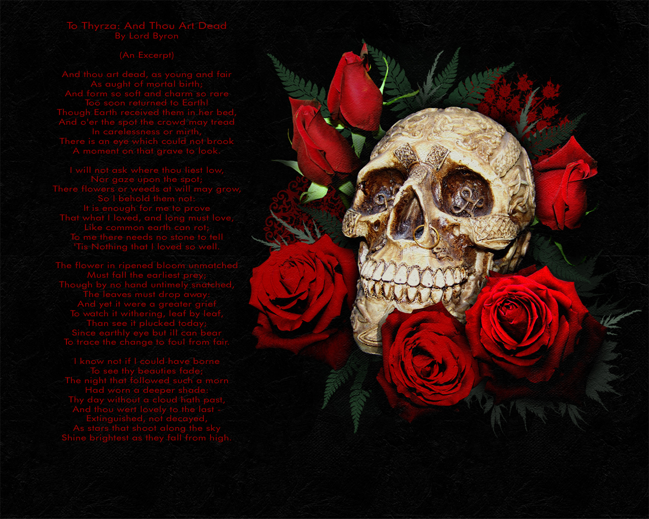 http://2.bp.blogspot.com/-hqg5yQCoVw0/TdcYrNzQAPI/AAAAAAAAAOo/Y4-TonVVWVA/s1600/Skull_and_Red_Roses_wallpaper_by_SerenityNme.jpg