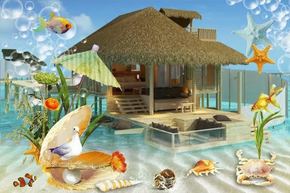 Video-Hotels Maldives