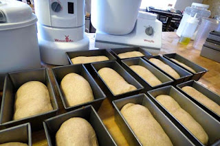 rising-bread-dough