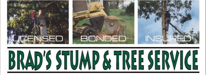 Brads Stump and Tree Service | Arlington, Washington