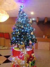 Her en en samling juletrær som jeg har tatt bilde av...