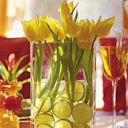 Centro tulipanes y lima