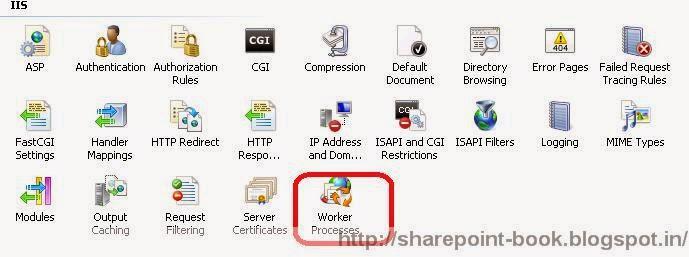 IIS worker process