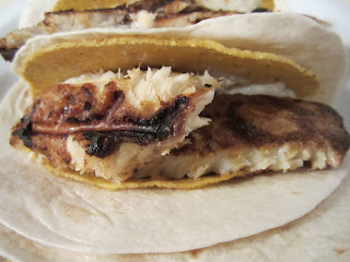 Grilled Tilapia Fish Tacos