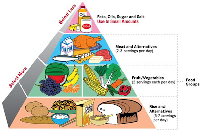 balanced diet, balanced meal, food chart, food pyramid