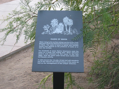 Oasis of Mara Sign