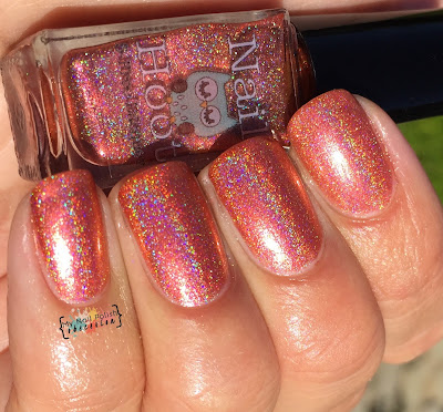 Nail Hool Leviticus Holo'd