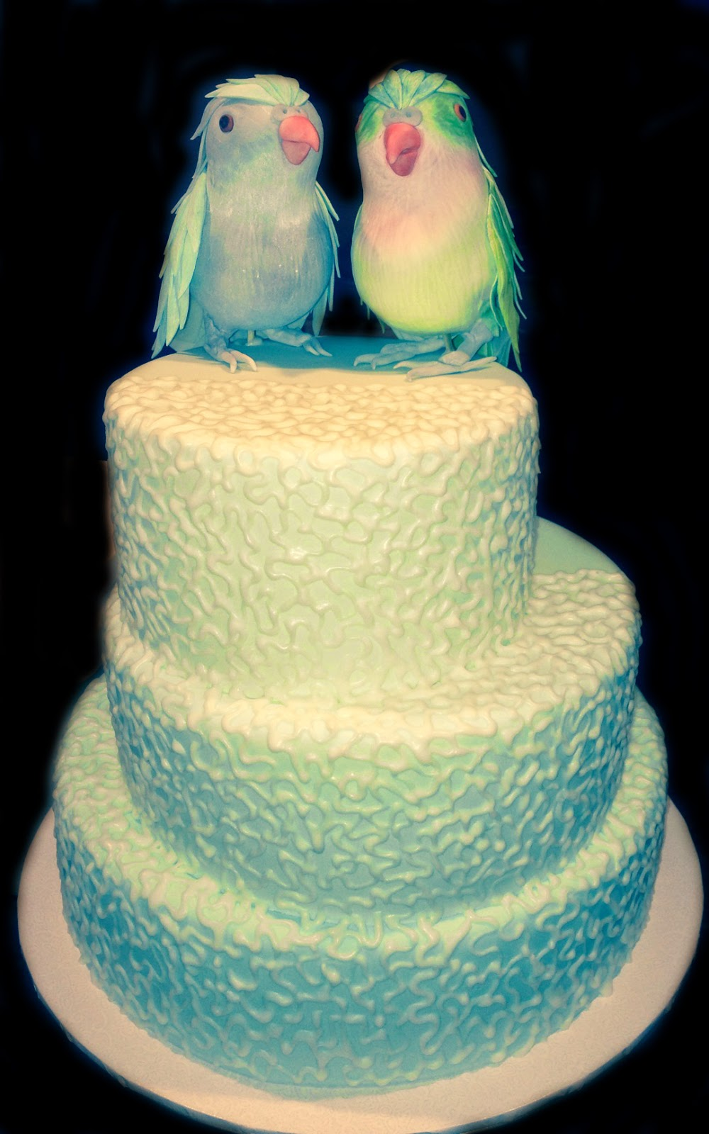 Nada\'s cakes: Parrot Toppers Wedding Cake - by Nada\'s Cakes Canberra