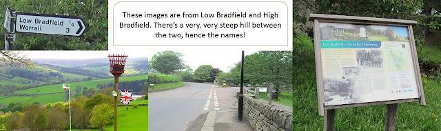 Low and High Bradfield