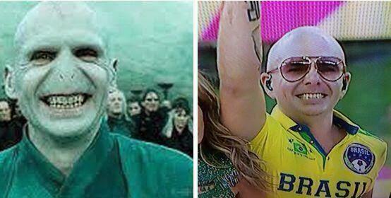 Separados al nacer : Pitbull vs Lord Voldemort