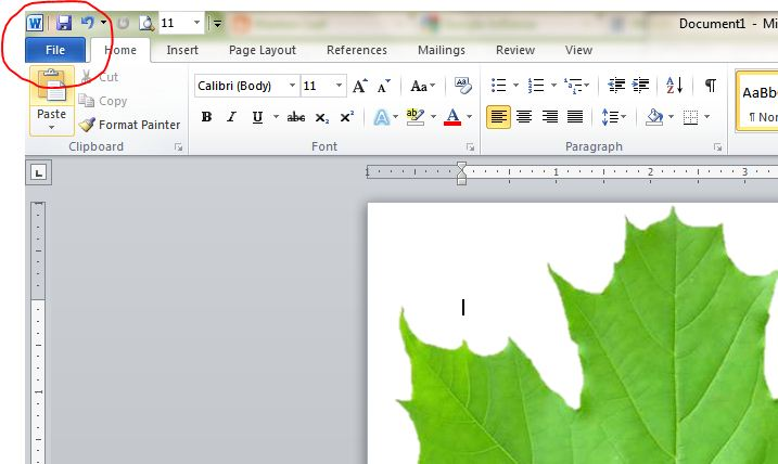 How to embed fonts in ms word document docx file