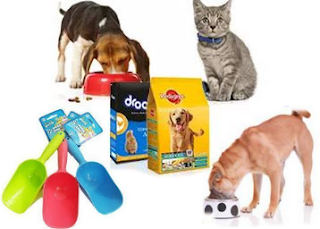 Paytm : Buy Pet Supplies And Get At 51% Cashback – BuyToEarn