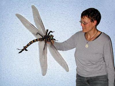 todos - La aerodinámica de las alas no es la misma en todos los planetas Woman+and+meganeura