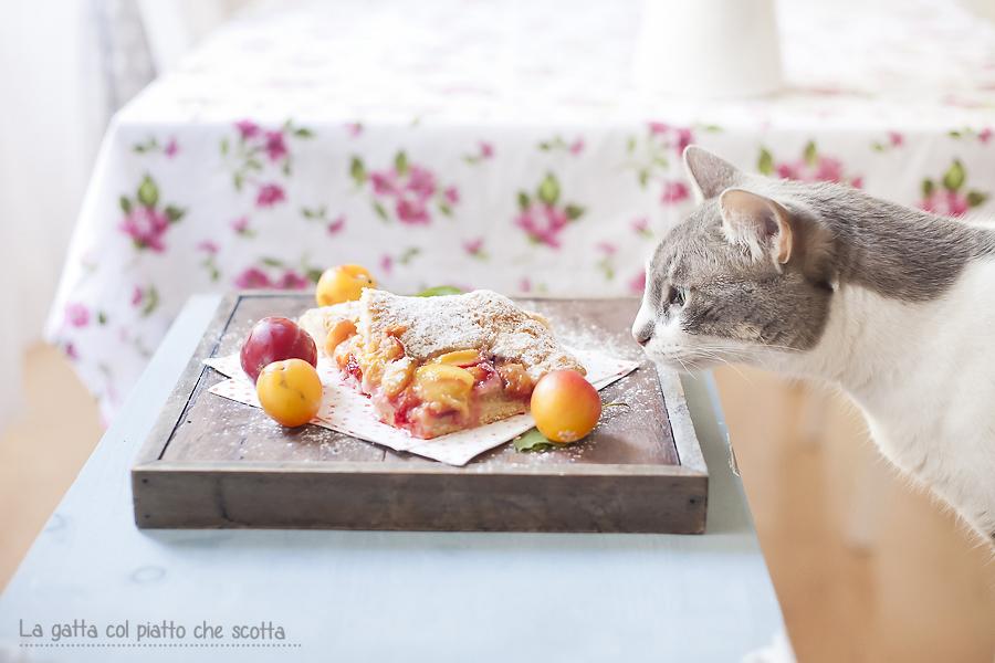 la gatta blog de cocina