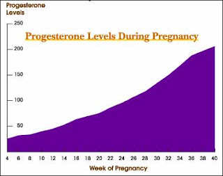 Progesterone Levels During Pregnancy