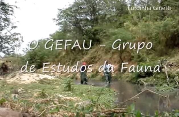 Campo GEFAU - Comissão de Estudos da Câmara | Canal Lurdinha Ginetti.