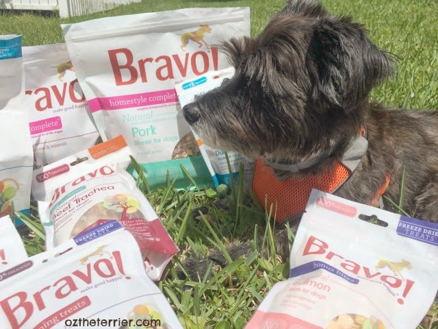 Bravo products include frozen & freeze-dried raw diets as well as treats and chews